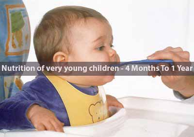 Nutrition of very young children – 4 Months To 1 Year