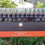 SOULTREE LIPSTICK REVIEW