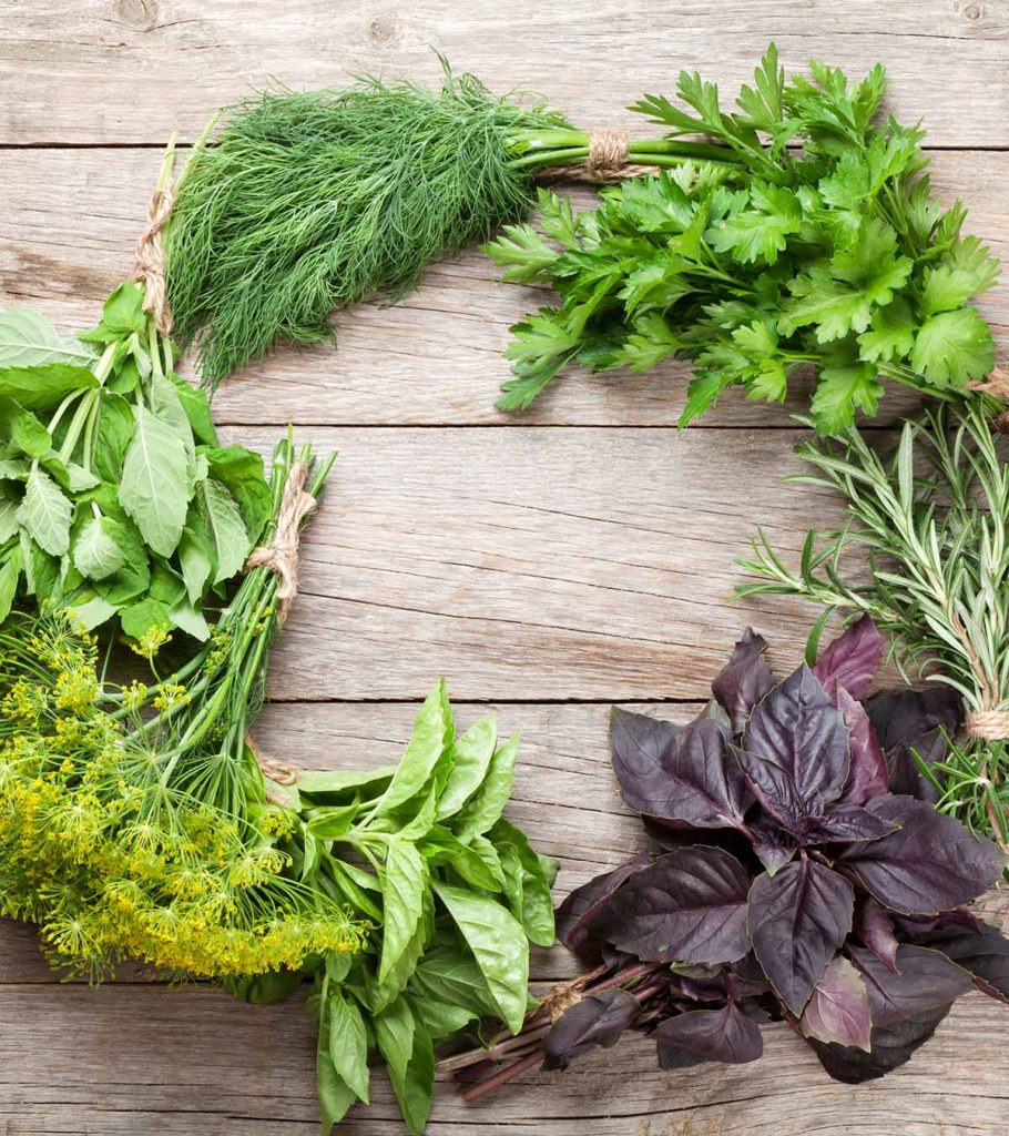 Herbs For Lactation Induction: