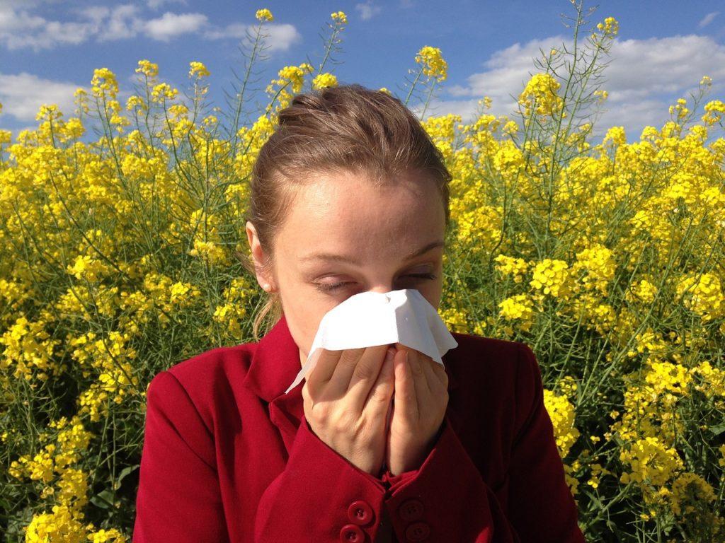 alleregy