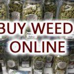 Cannabis Edible