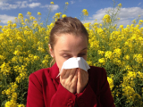 Are Shots the Best Treatment for Severe Allergy Symptoms?