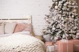 Indoor Fruit Trees You Can Grow in Your bedroom
